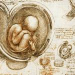 Vaccini Covid e rischio infertilità