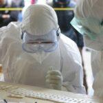 """Una nuova pandemia in arrivo? Cosa sappiamo davvero sull'""""allarme"""" del CDC sulla Candida auris"""