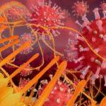 I vaccini mRNA possono modificare il DNA cellulare? Secondo una recente ricerca potrebbero farlo