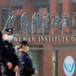 """Covid, intelligence Usa: tre ricercatori di Wuhan ricoverati nel novembre 2019. Fauci: """"Non convinto dell'origine naturale"""""""