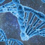 Lo studio che potrebbe spiegare il magnetismo nel punto di inoculazione del vaccino Covid