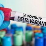 Tasso di mortalità per variante Delta COVID 6 volte superiore per i vaccinati rispetto ai non vaccinati, lo mostrano i dati sanitari del Regno Unito